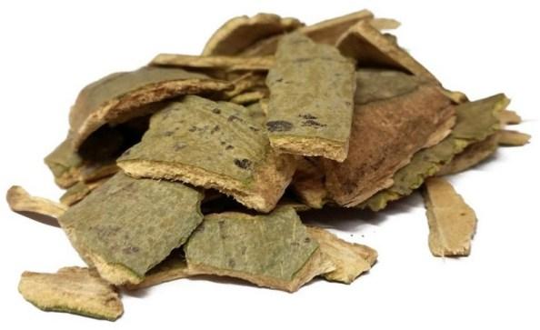 Кора осины в лечении печени
