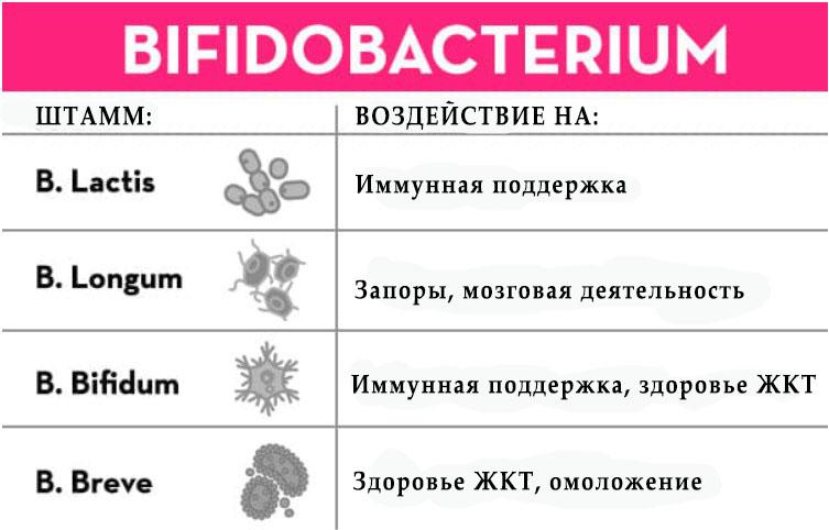 пробиотики для кишечника список